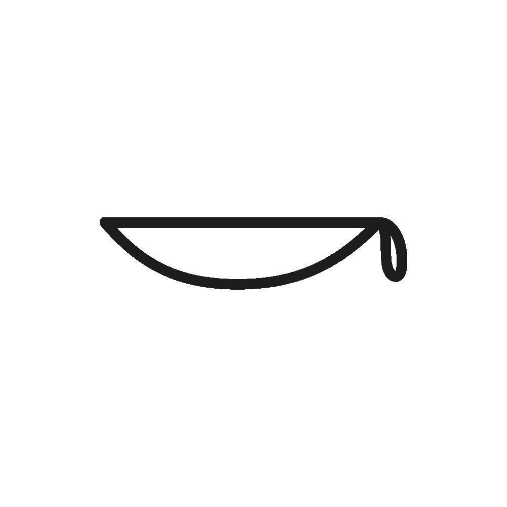 Hiéroglyphe V31