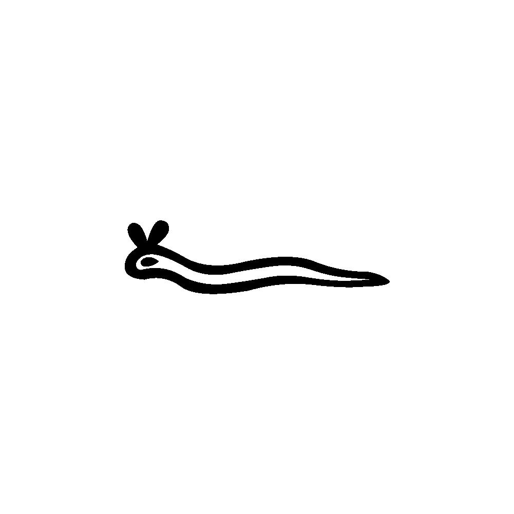 Hiéroglyphe I9